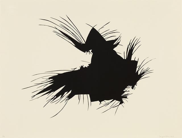 Morgan O'Hara, 'Il Gallo in Michoacán, Mexico', 2015, Aspinwall Editions