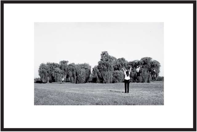 , 'Saule Pleurant -Saule Rêvant,' 1974, Galerie Heike Strelow