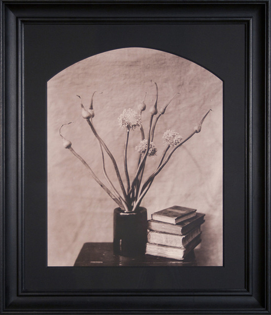 , 'Allium, Stone Ridge, NY,' 1990, Gallery 270