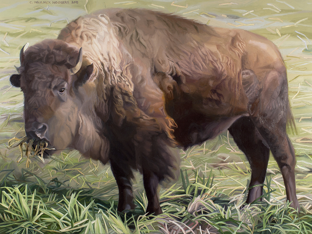 , 'Slovenly Bison,' 2016, The Lionheart Gallery