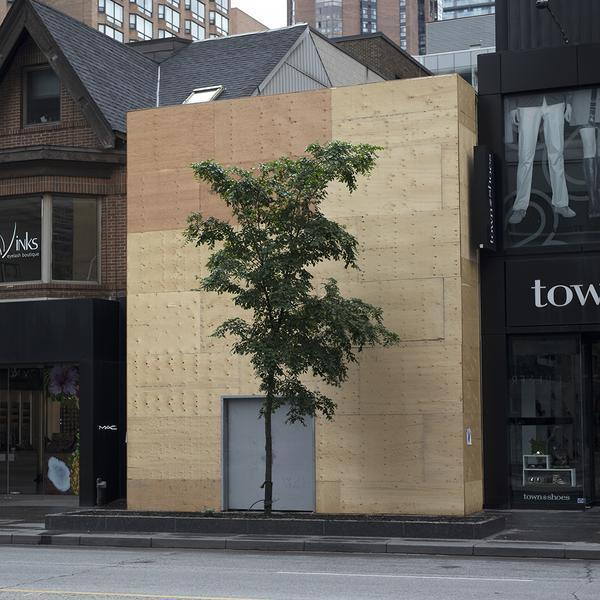 , 'Yorkville Hoarding and Tree,' 2018, Bau-Xi Gallery