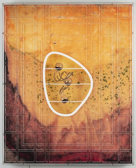 Anicka Yi, 'The Tacit Dimension', 2019, Aspen Art Museum Benefit Auction