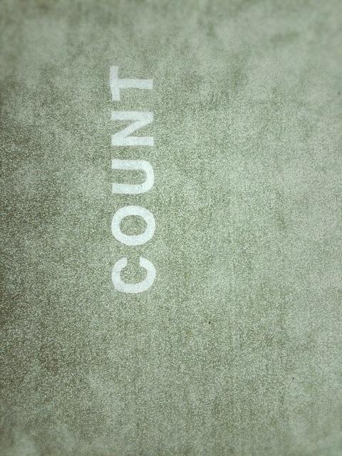 , 'Count,' 2016, TKG+