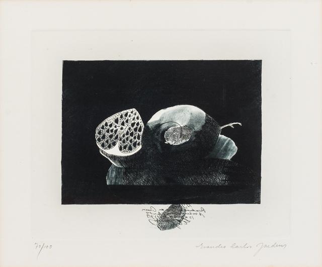 Evandro Carlos Jardins, 'ECM#3 Romãs', 1970-1980, Ligia Testa Espaço de Arte