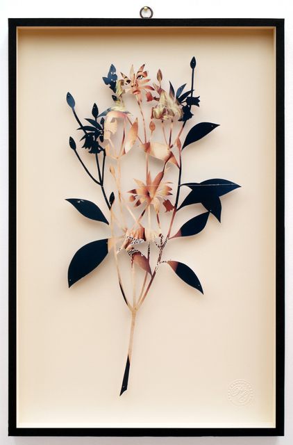 , 'You Can Learn a Lot of Things From the Flowers - Plant CXXXVII - Enkianthus quinqueflorus - Playmen - La Playgirl di Dicembre - Mia,' 2014, Less is More Projects