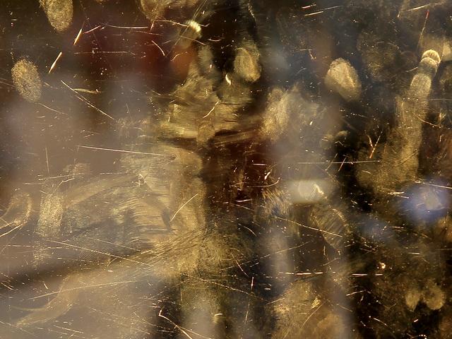 , 'Golden Fingers,' 2017, Galerie Michaela Stock