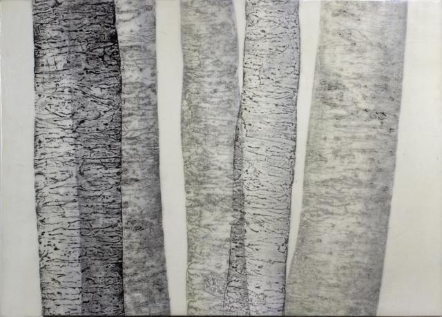 ", ''Birch Family #2"",' , Novado Gallery"