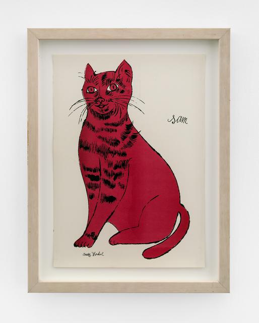 Andy Warhol, 'Sam', 1954, The Bonnier Gallery