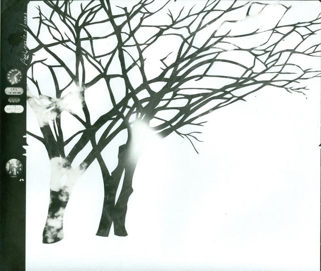 , 'Tierra Caliente(Conflicted Land),' 2012-2013, Casas Riegner