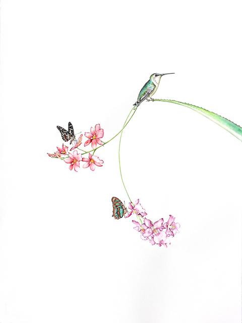 , 'Butterfly Effect 4,' 2017, Clark Gallery