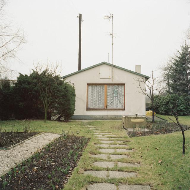 , 'Cat. VI L,' 1979/2014, Gallery Luisotti