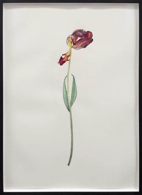 , 'Tulip Orange and Red,' 2015, Deweer Gallery