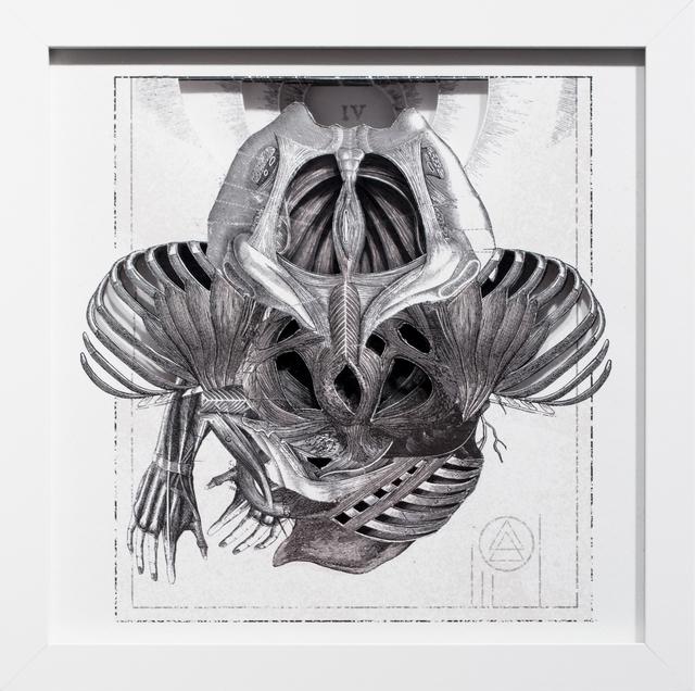 , 'Fluke IV,' 2017, Paradigm Gallery + Studio