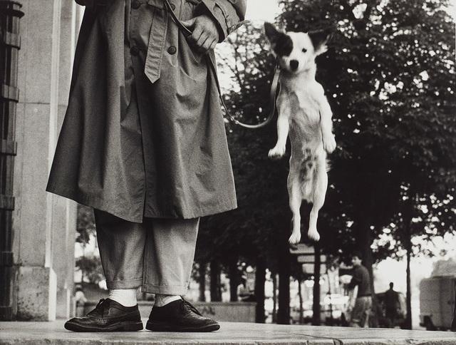Elliott Erwitt, 'Paris', 1989, Phillips