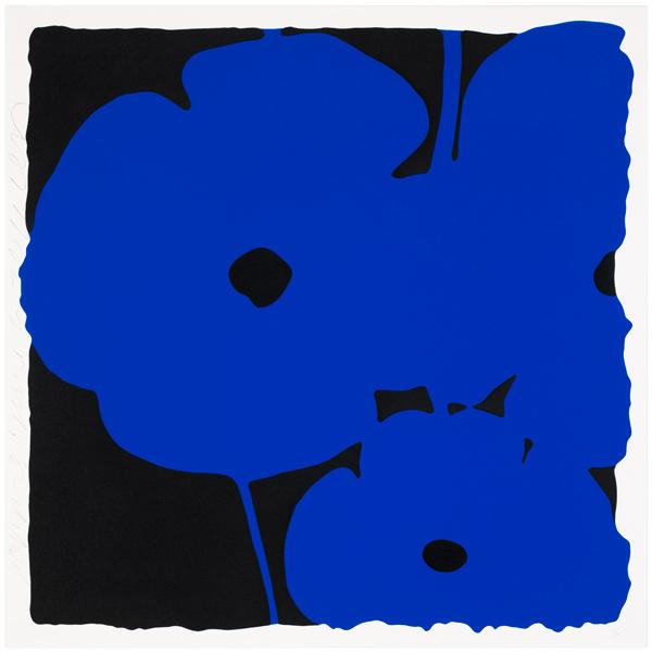 Big Poppies-Blue
