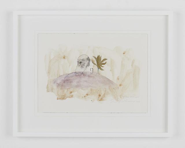 , 'golden champaca,' 2017, Tomio Koyama Gallery