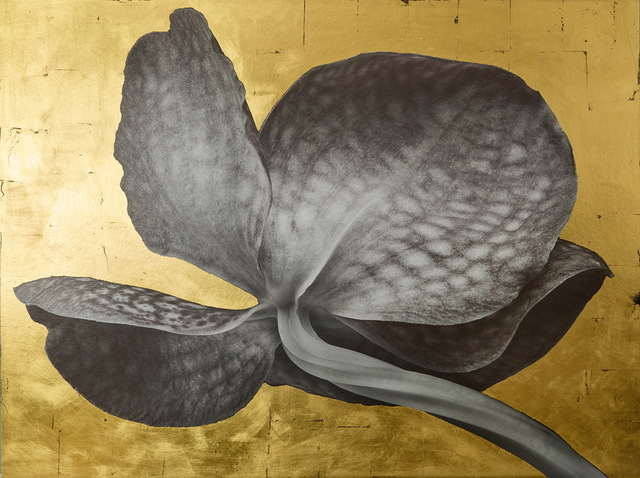 , '#723 2013,' 2017, Pierre-Yves Caër Gallery