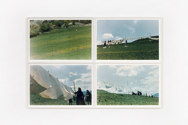 , 'Humid Installation,' 1970, P420