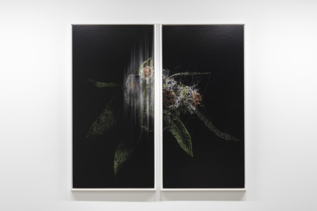 , 'lttrans #7,' 2018, Takuro Someya Contemporary Art