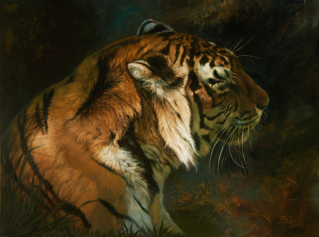 , 'Tiger Shadows  ,' 2015, Abend Gallery