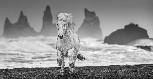 David Yarrow, 'The Perfect Storm', 2018, Photography, Archival Pigment Print, Hilton Asmus