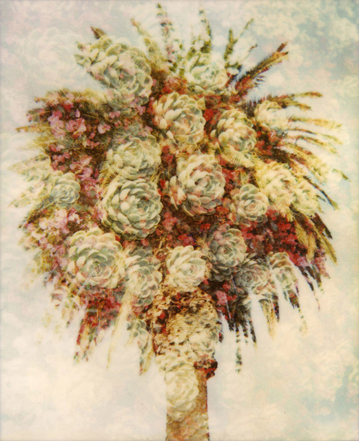, 'Champagne Palm ,' 2010, Sanderson Contemporary Art