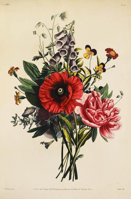 , 'Collection des fleurs et des fruits, peints d'apres nature.,' 1805, Shapero Rare Books Limited