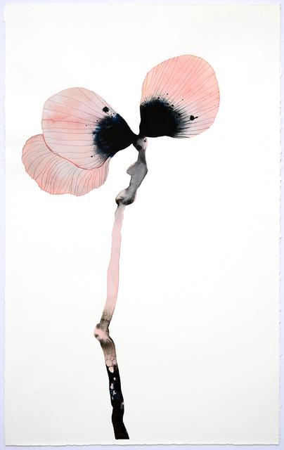 , 'Stemmed Flower II,' 2018, SHOWstudio