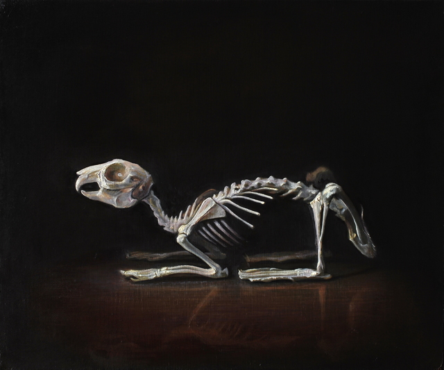 , 'Rabbit Skeleton,' , Booth Gallery