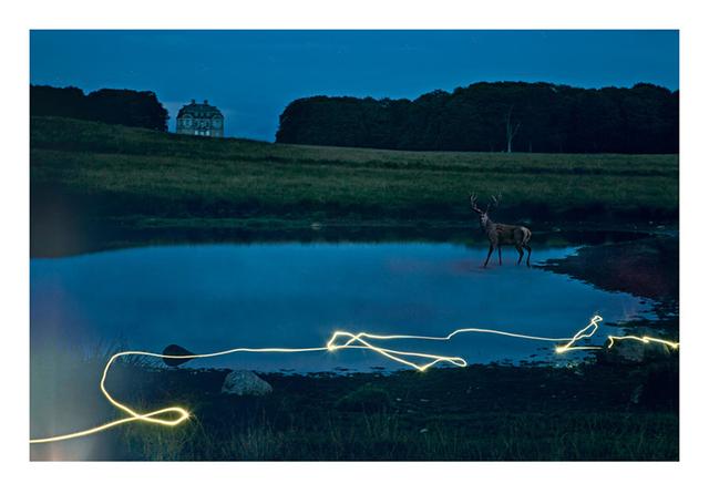 , 'Wandering Alone,' 2018, Hans Alf Gallery