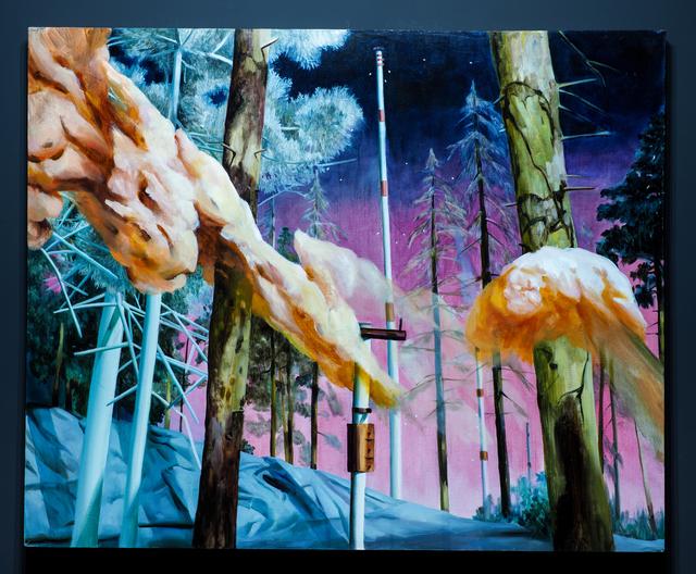 , 'Inner Taiga - Episode 10,' 2013, Mobius Gallery