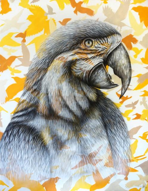 , 'Parrot,' 2017, Mazel Galerie