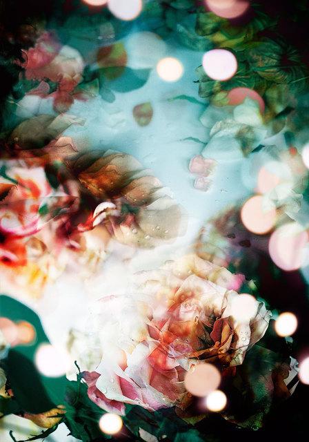 , 'Petites Natures #9,' 2015, Muriel Guépin Gallery