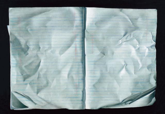 , 'Notebook,' 2013, Dan Gallery