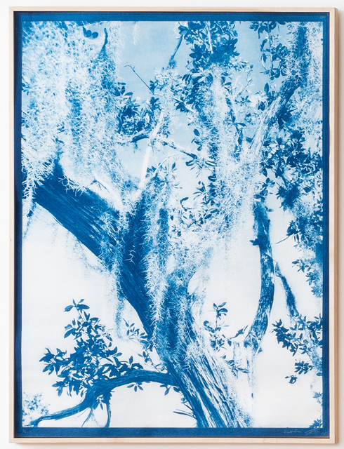 , 'Dream in Blue 2,' 2019, Litvak Contemporary