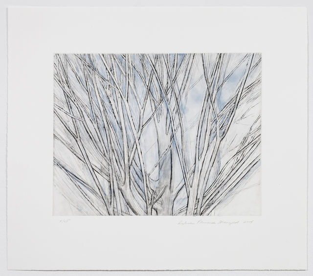 , 'Winter Maple,' 2014, Alexander and Bonin