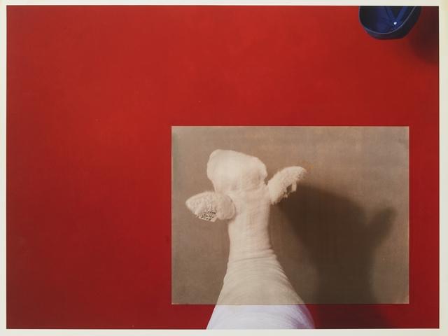 R. J. Kern, 'Salty Frog', 2019, Photography, Salt over archival pigment print, Olson Larsen Gallery