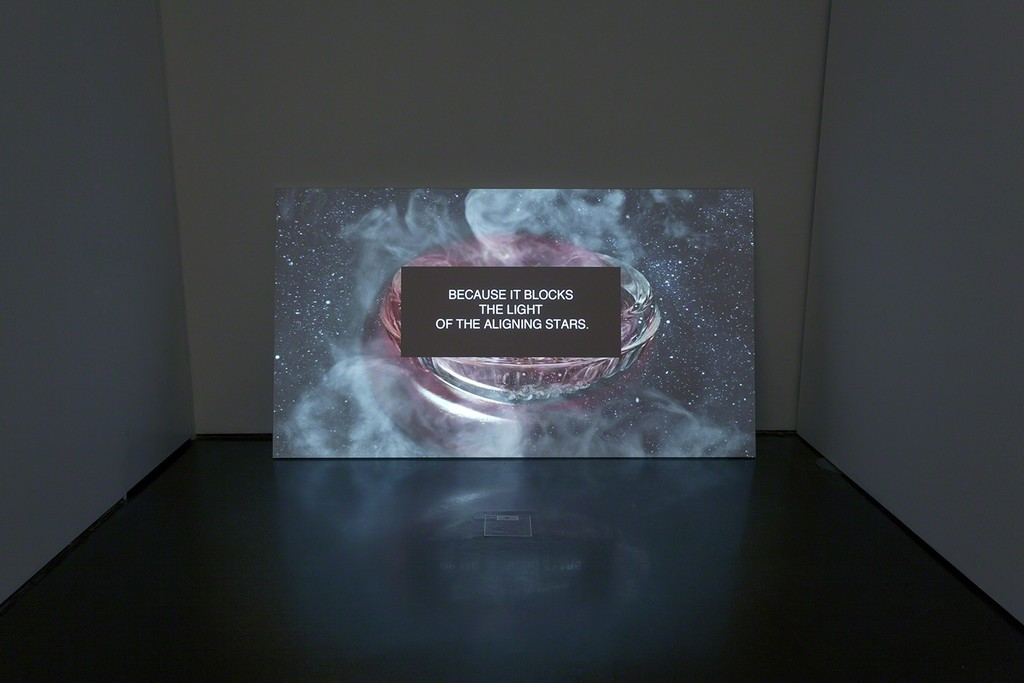Cuckoo features Polska's most recent works, including a video, My Little Planet, shown at the New Museum's Screen Series in 2016. Photo: M. Gardulski