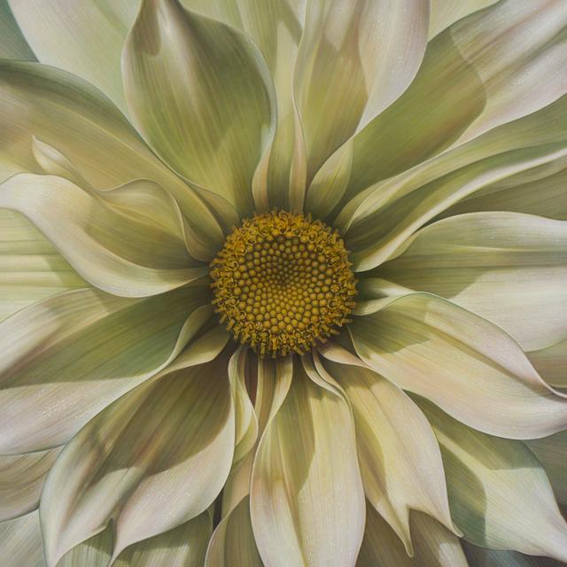 , 'Flower Series #21 ,' , Rosenthal Fine Art