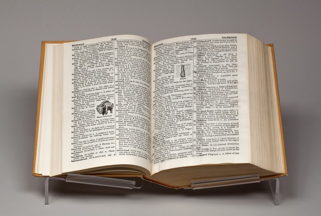 , 'Black and Blue Dictionary,' 2014, Richard Gray Gallery