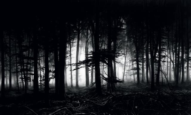 Robert Longo, 'Untitled (Forest of Doxa)', 2014, Print, Archival Pigment Print, Galerie Raphael