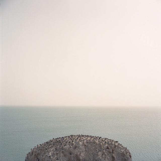 , 'Niao Dao,' 2015, UP Gallery