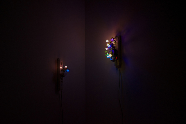 , 'Night Mushroom Colon (Four),' 2015, Galerie Allen