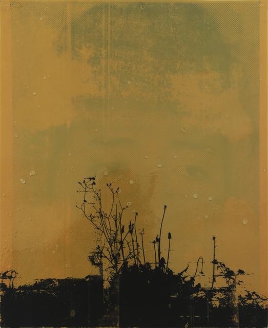 Moris, 'Yerba Mala #02', 2014, Mixed Media, Paint, transfer paper, contact adhesive on paper, Baró Galeria
