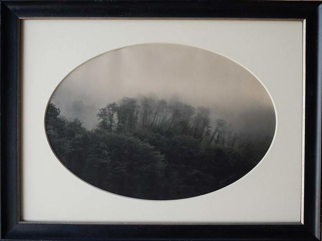 , 'Trees in Mist, Benabbio, Italy,' , Etherton Gallery