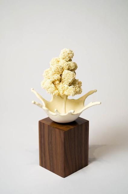 , 'Microcosm,' 2016, Abmeyer + Wood Fine Art