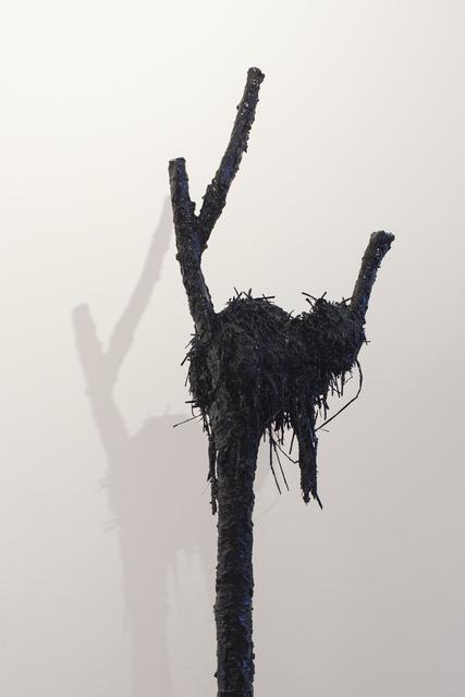 , 'Big Cat In Small Tree,' 2015, Flowers