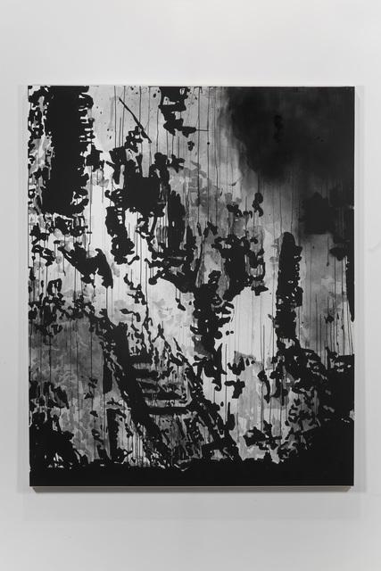 , 'Valley Fire 2015,' 2016, Galleria Raffaella Cortese