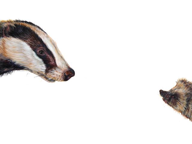 , 'Top Predator Badger and Hedgehog ,' 2017, The Biscuit Factory