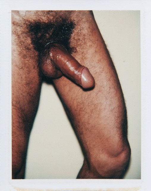 Andy Warhol, 'Andy Warhol, Polaroid Photograph from the 'Sex Parts and Torsos' Series', 1977, Photography, Polaroid, Hedges Projects